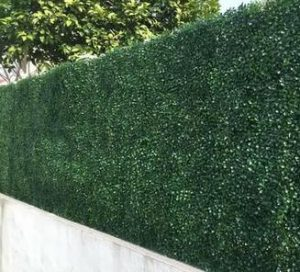 Outdoor artificial green wall - boxwood