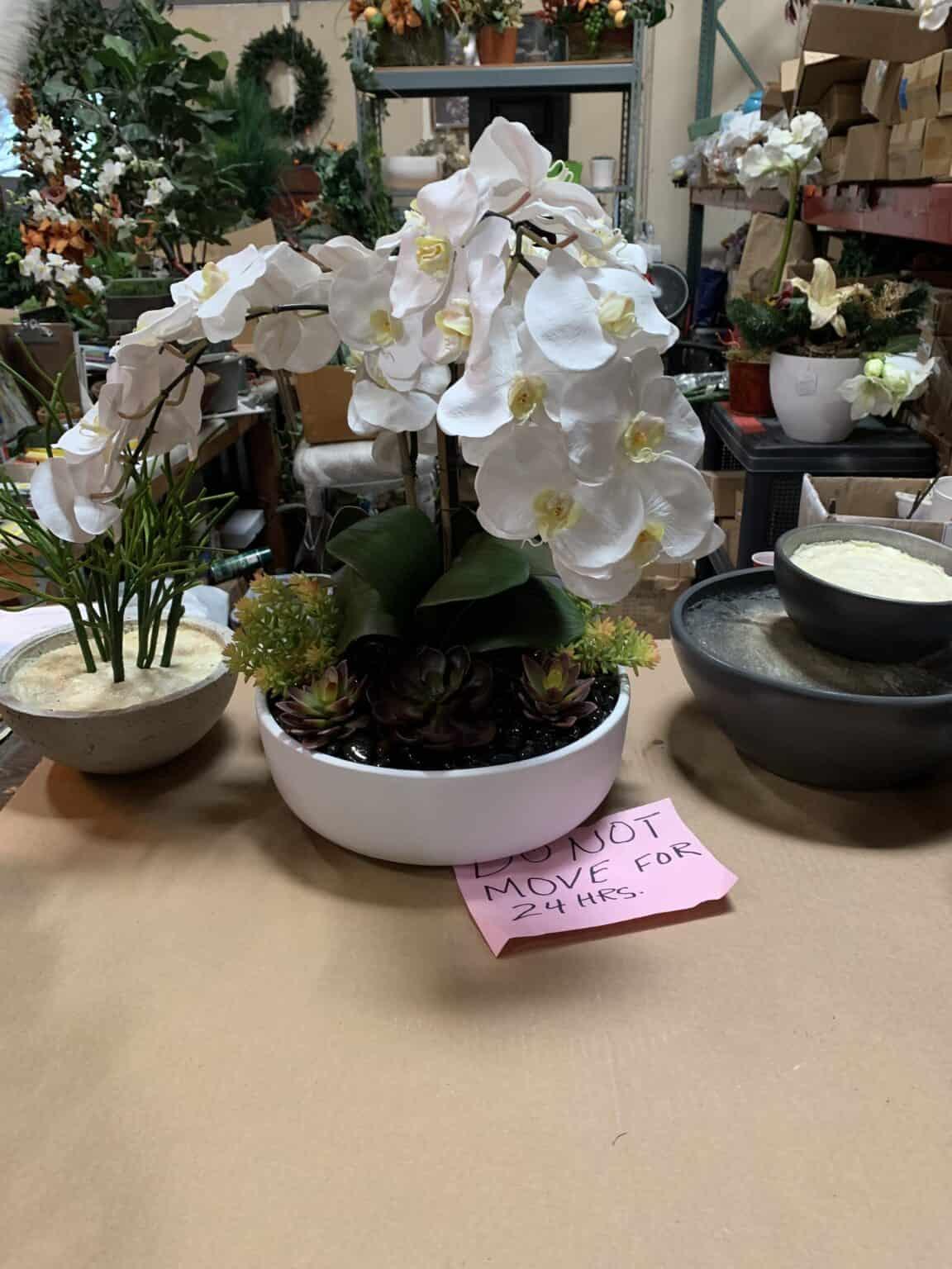 White silk orchid arrangement