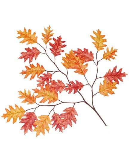 Orange and Red Pin Oak Spray