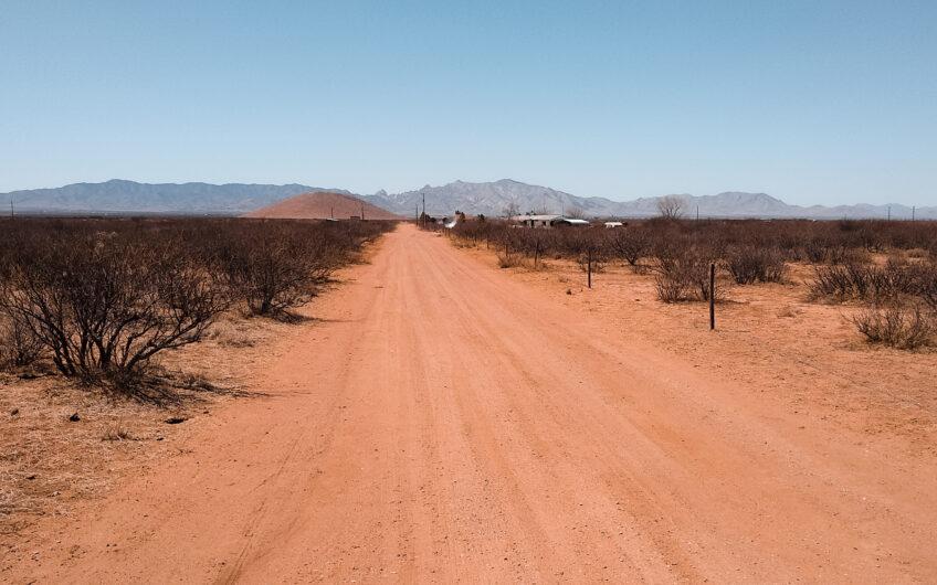 Southwest Desert Beauty