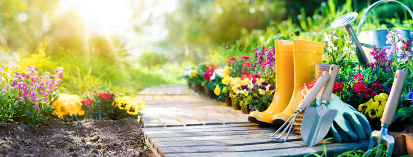 gardening and exercise