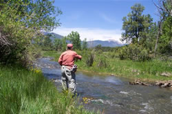 Angel Fire Fly Fishing