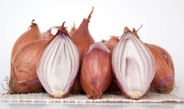 Are Shallots Onions?