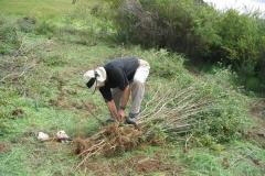 Earth Day Photo_broom1