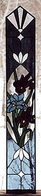 Iris panel for front door