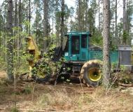 Timberjack Feller-buncher