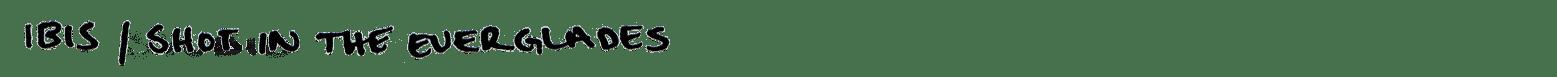 ibis text