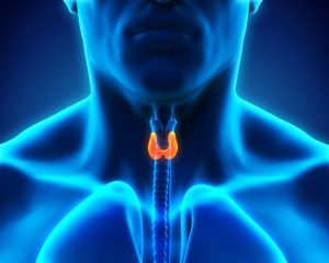 Home Health Care Kirkland WA - How Can You Help Your Senior Lower the Risk of Recurring Thyroid Cancer?