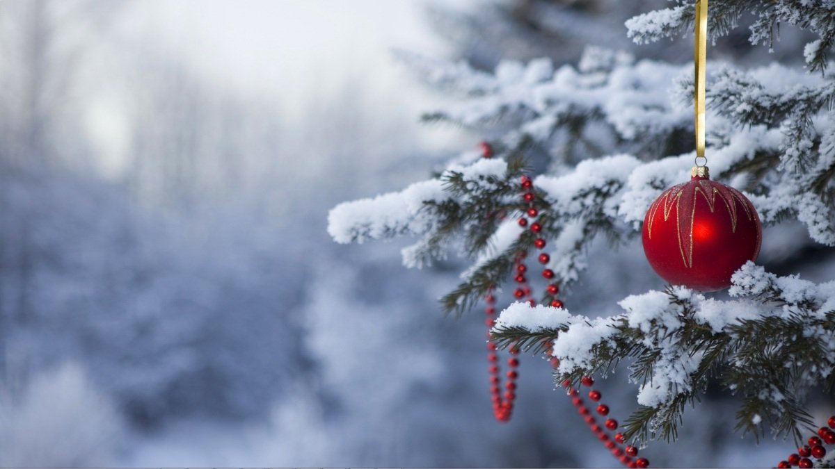 Raise Your Consciousness This Holiday Season  (not just consumption)