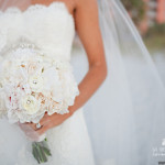Erica and Scott's Wedding Video at Hyatt regency Clearwater Beach