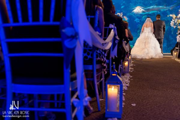 la-vie-en-rose-wedding-ceremony-crystal-chandelier-draping-petals-florida-aquarium-tampa