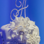 Martine and Gary's Wedding at La Vie en Rose's Tampa Venue