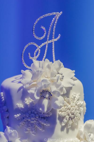 la-vie-en-rose-cake-wedding-purple-venue-tampa-florida