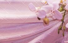 Linens & Draping