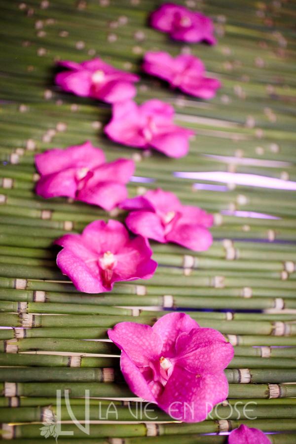 la-vie-en-rose-knot-wedding-mixer-green-bamboo-backdrop-purple-orchid-1930-grand-room-tampa-florida