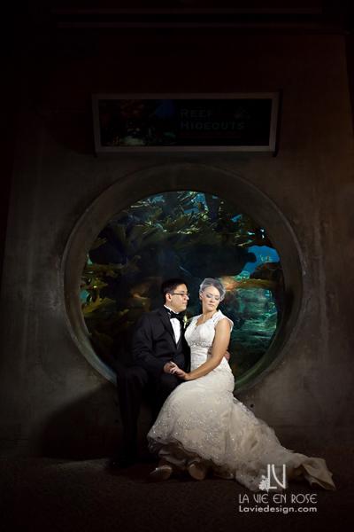 la-vie-en-rose-wedding-boutonniere-groom-bride-florida-aquarium-tampa-