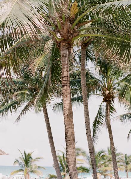 La-vie-en-rose-miami-florida-wedding-elegant-ritz-carlton-south-beach