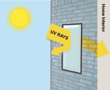 Solar Screening