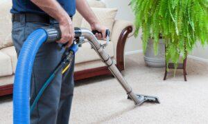 clean carpets tucson