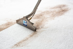 carpet cleaning tucson