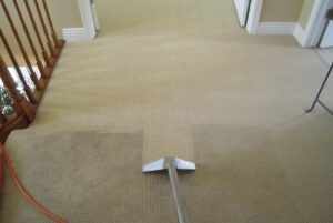carpets after clean