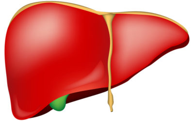 The Liver Cleanse