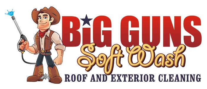 Big Guns Soft Wash