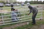 Stans work day Apr 33.JPG