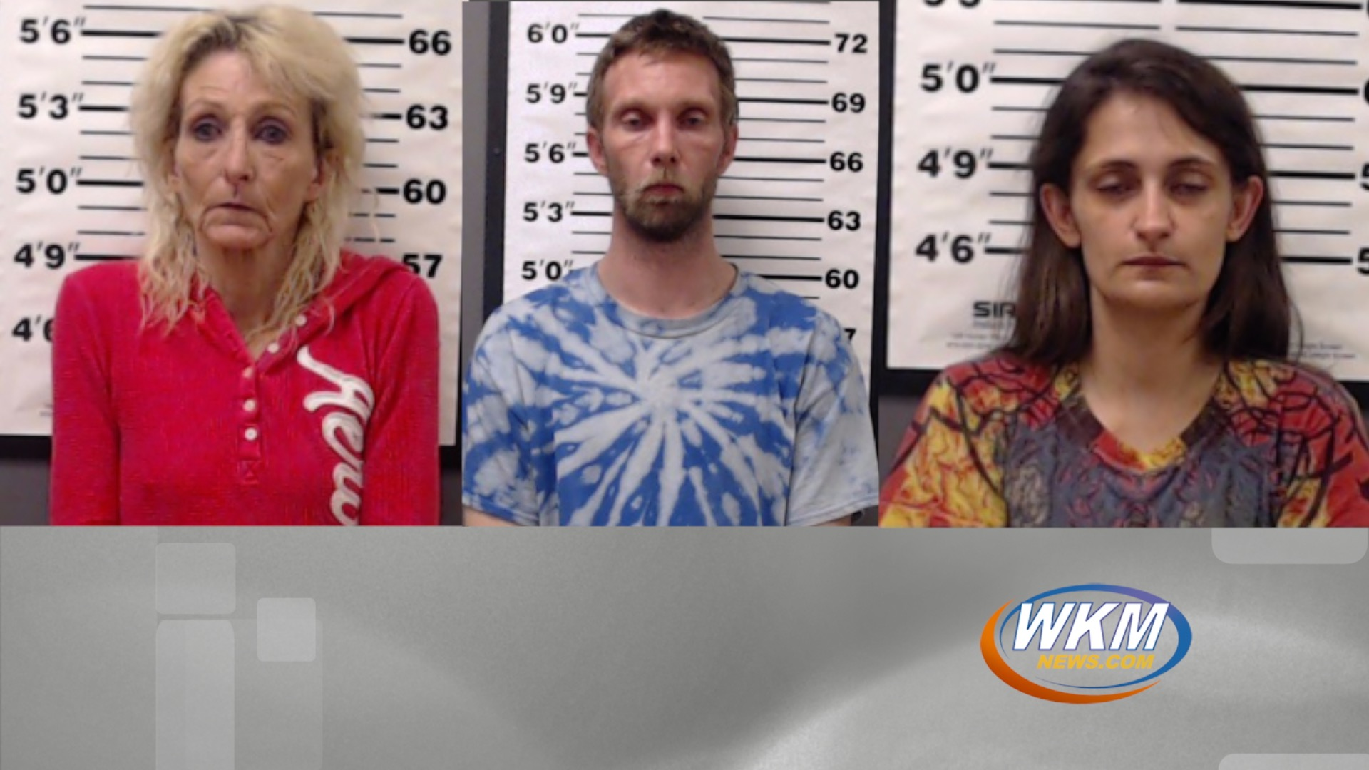 Three Madison Residents Arrested on Felony Drug Charges