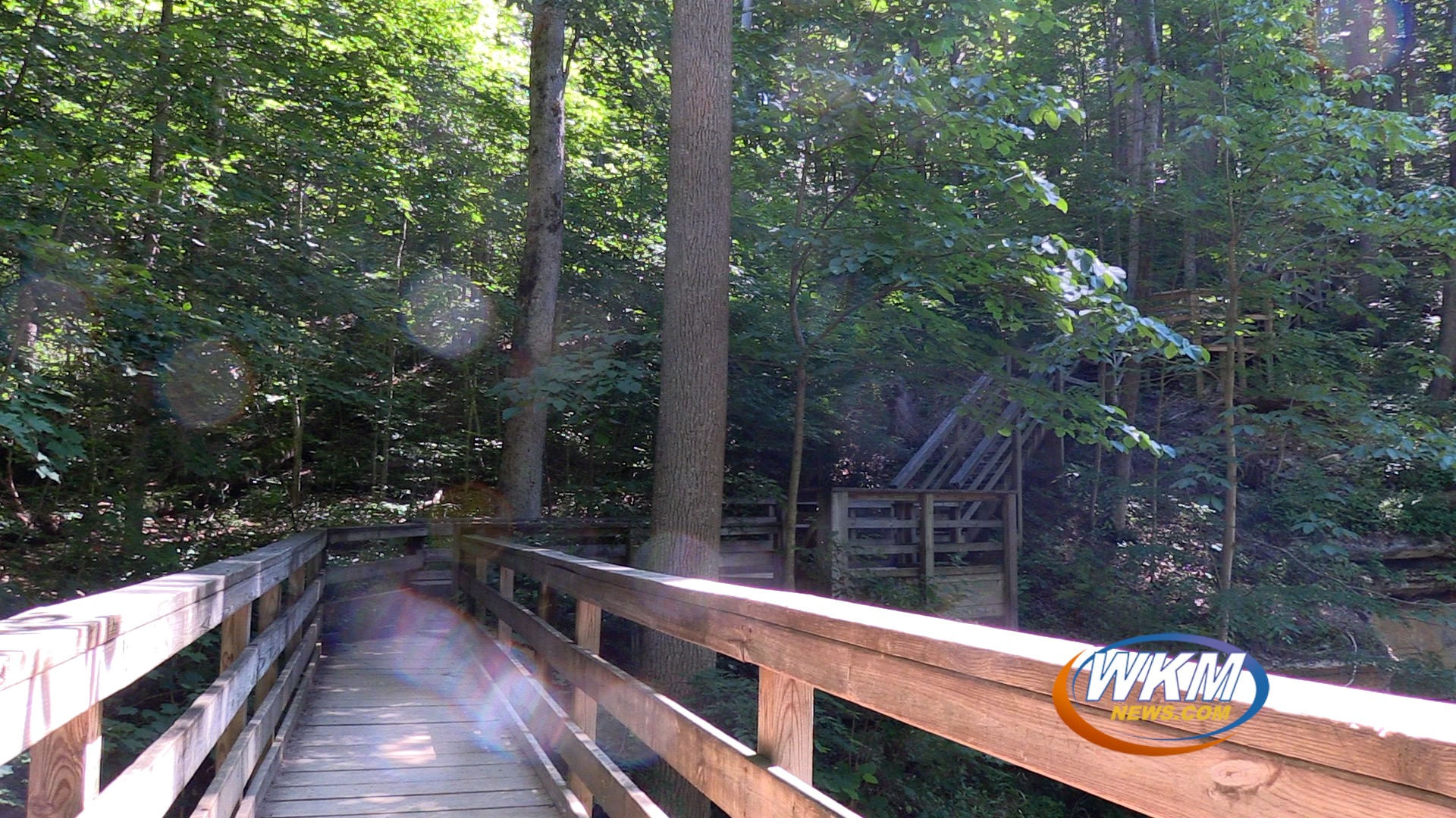 Hiking Season is Here at Clifty Falls State Park