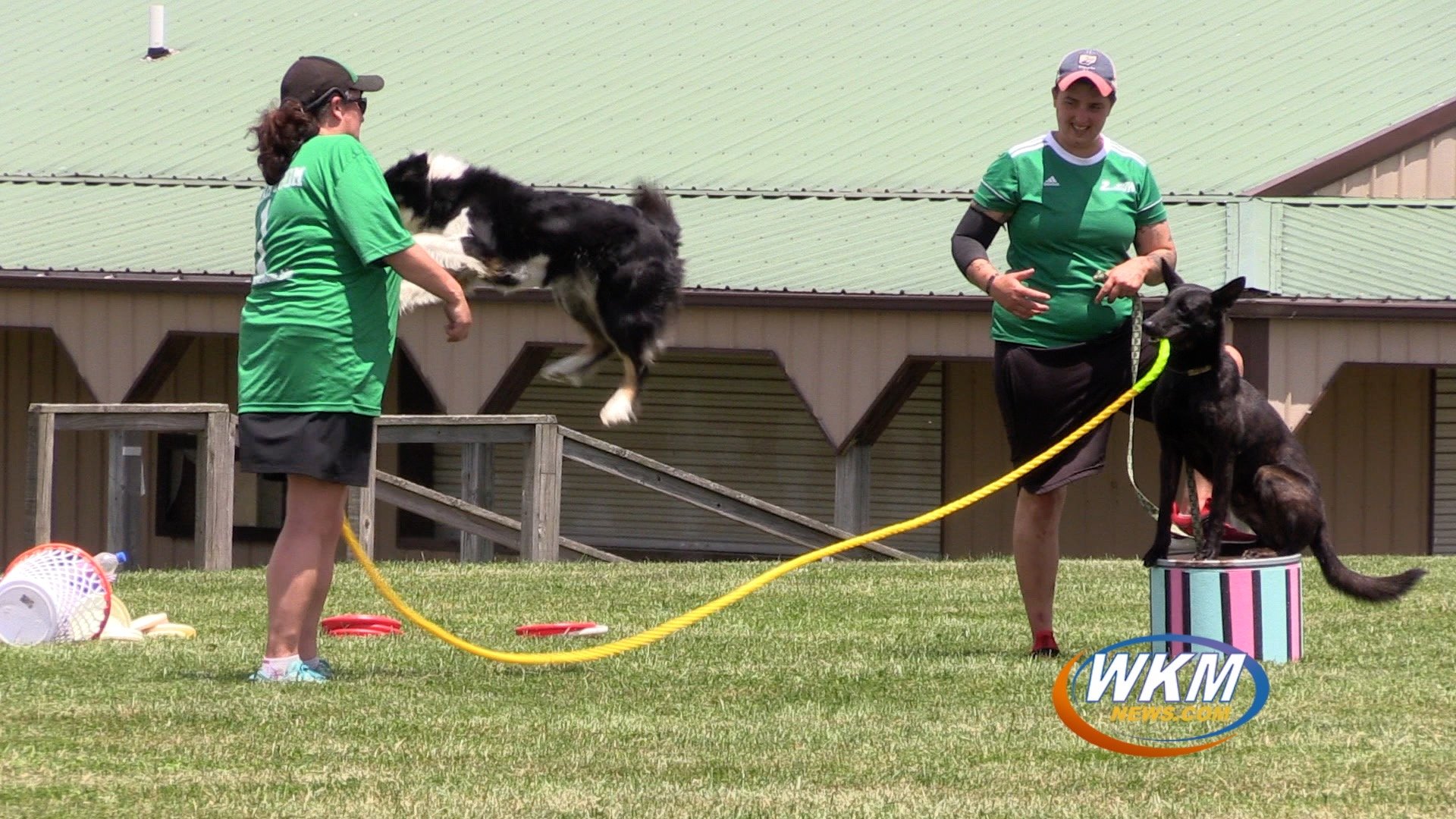 Extreme Dog Show Wows Trimble County