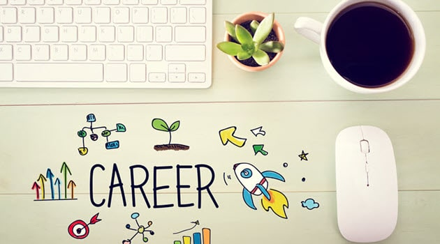 Information Technology Career