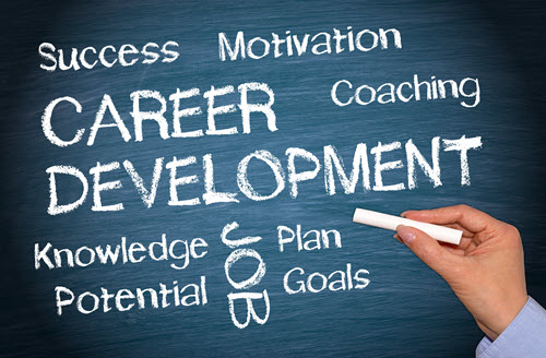 Information Technology Career Development