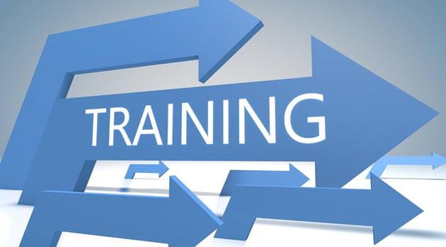 IT Training Course or Program