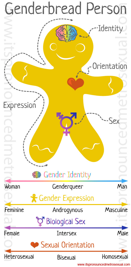 Genderbread gender identity graphic