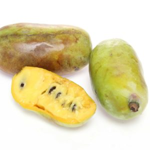 Pawpaw Tasting and Farm Tour with Dr. Charlie West