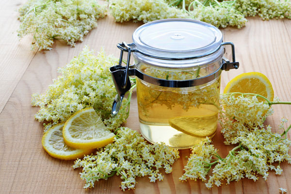 Niche Berries: Elderflower and Haskaps