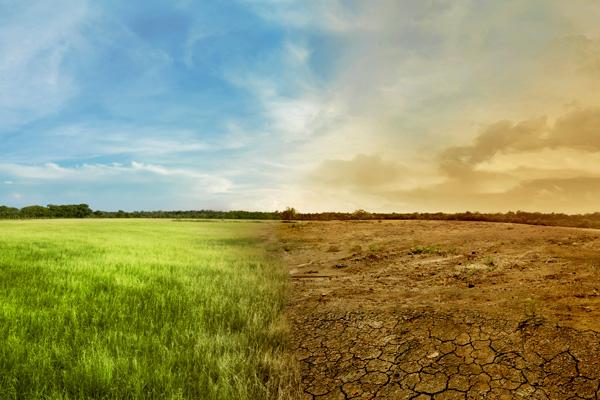 We need regenerative farming, not geoengineering   Guardian Sustainable Business   The Guardian