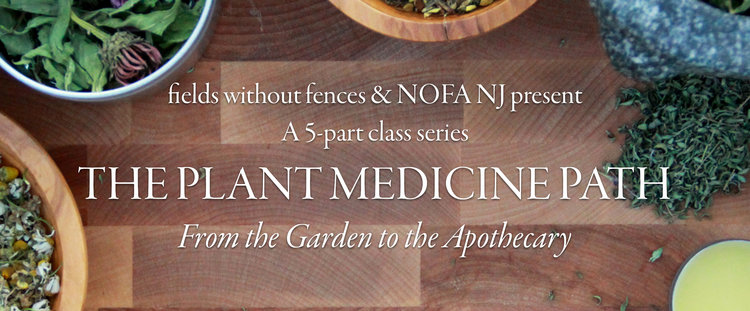 The Plant Medicine Path: From the Garden to the Apothecary