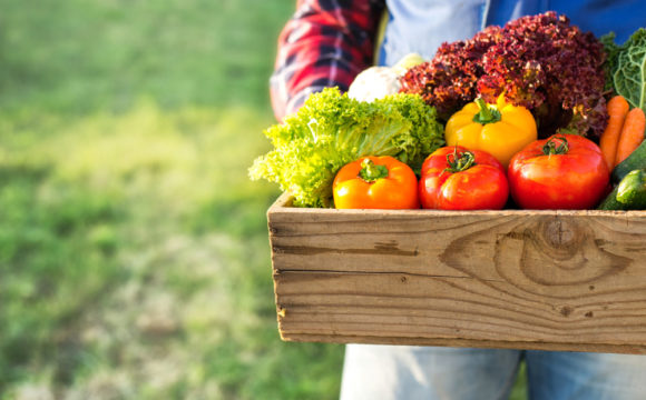 CSA Sign-Up Month is February