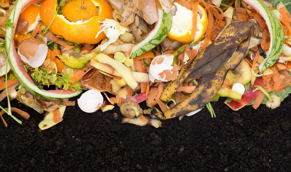 Mendham Township Environmental Commission Composting Workshop