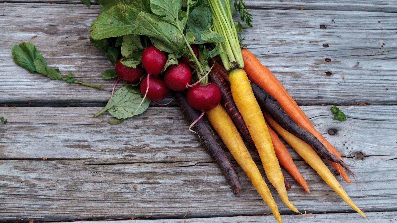 Post Harvest Handling -Storing Effectively