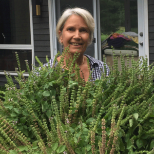 Weeds & Wild Plants for Immune Health