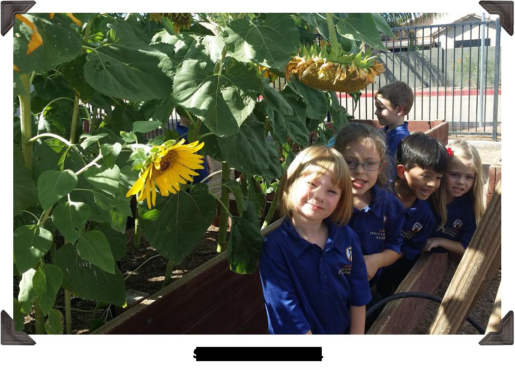 Scholars in the garden