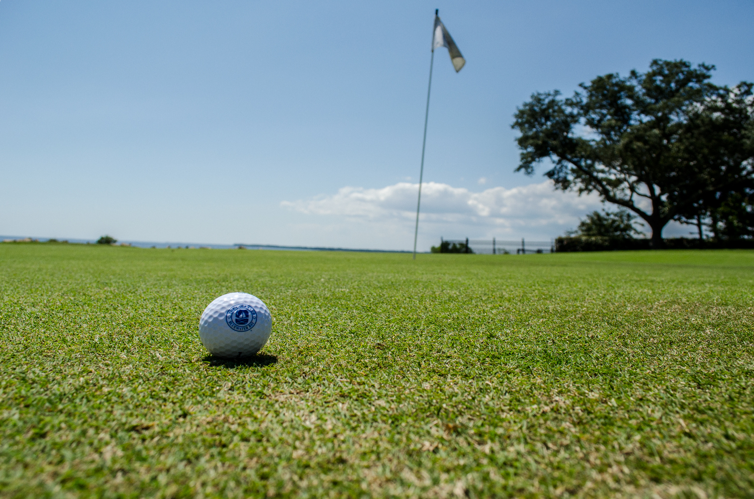 Catch Bluewater Golfing on the Coast