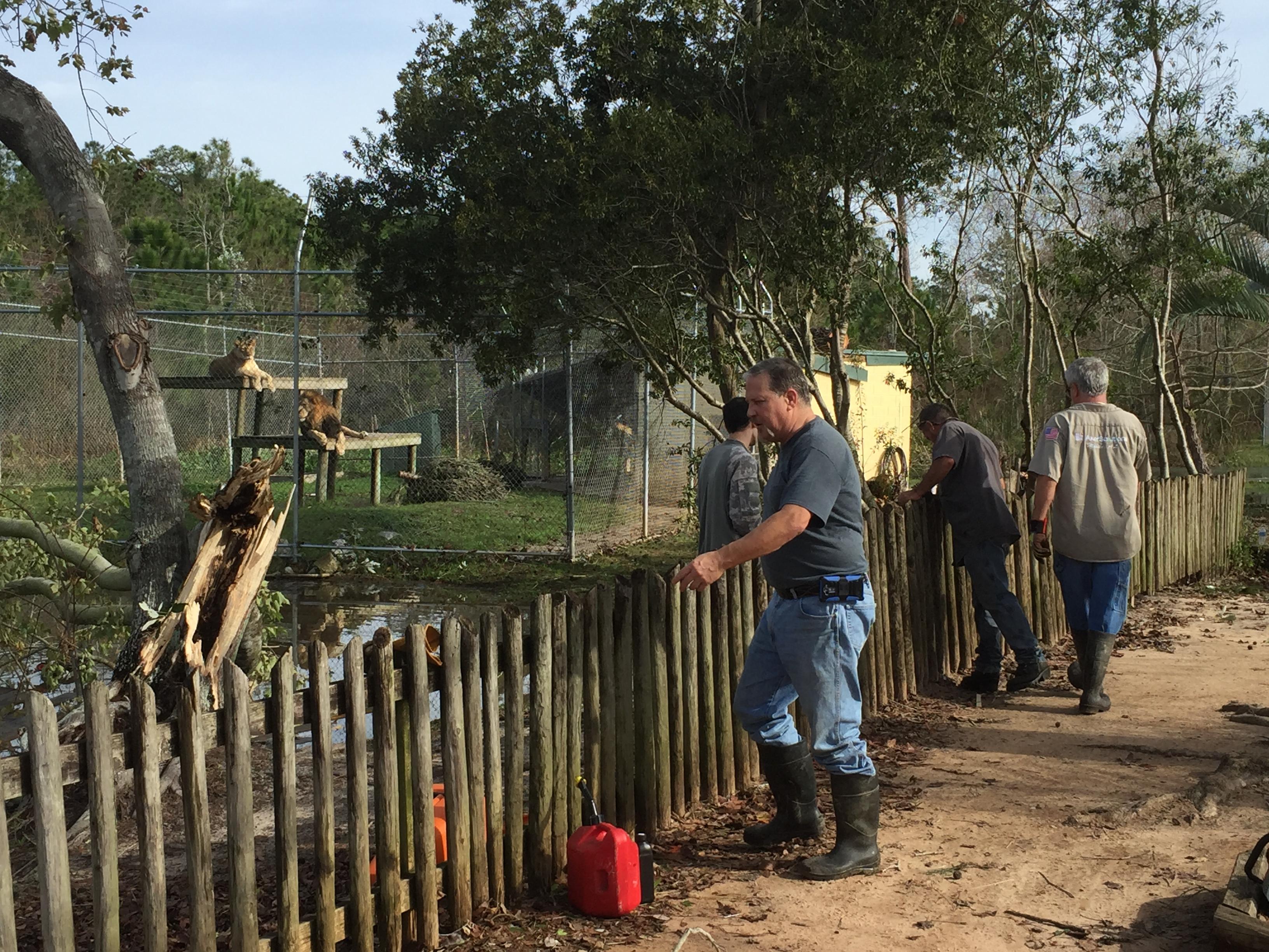 Alabama Gulf Coast Zoo sustains storm damage