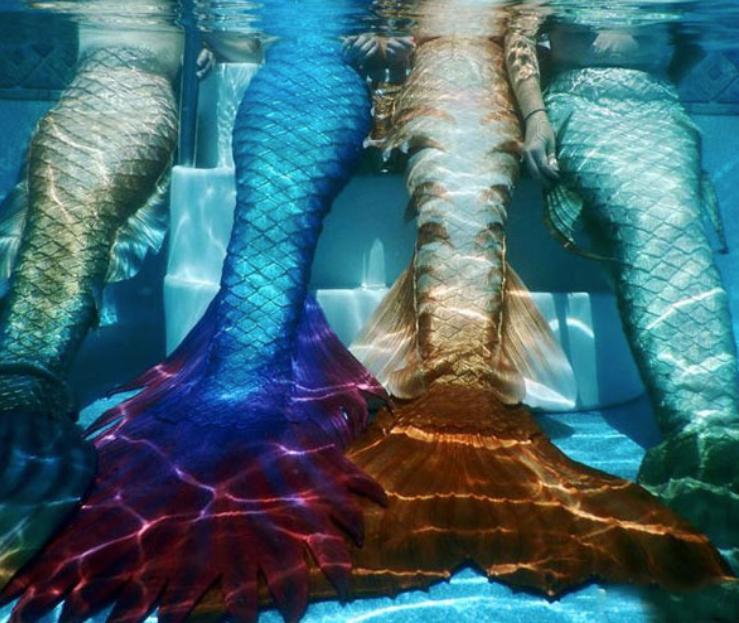 mermaid_tails2