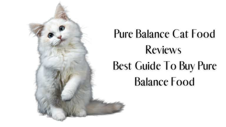 Pure Balance Cat Food Reviews | Best Guide To Buy Pure Balance Food