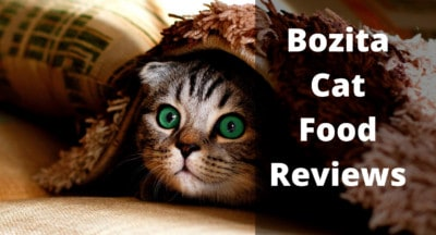 Bozita Cat Food Reviews | Bozita Cat Food UK | Feeding Guide | Bozita Cat Food for Kittens