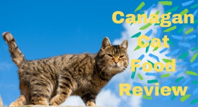 Canagan Cat Food Review | Is Canagan a Good Cat food?